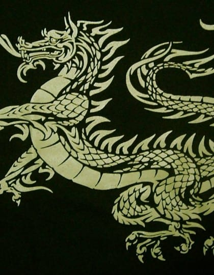 Ladies V-Neck Celtic Dragon T-Shirt by Maxine Miller ©celticjackalope.com