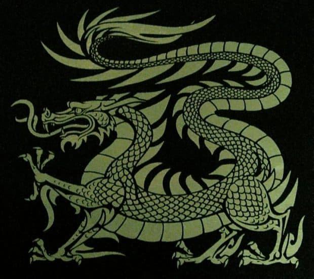 Mens Long Sleeve European DragonT-Shirt by Maxine Miller ©celticjackalope.com
